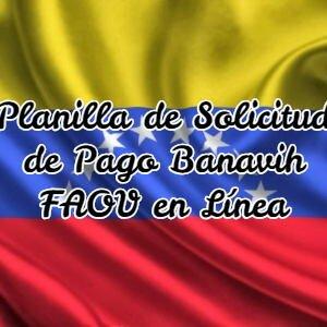 Planilla de Solicitud de Pago Banavih FAOV en Línea