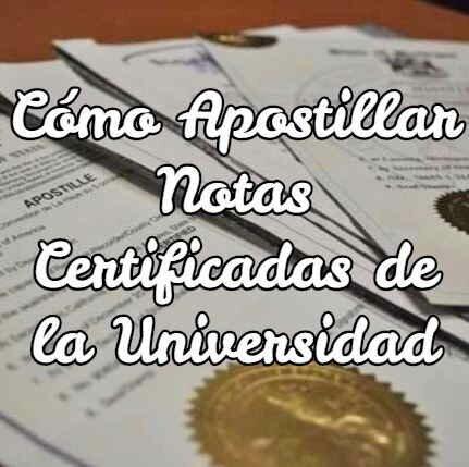 Cómo apostillar notas certificadas de la universidad