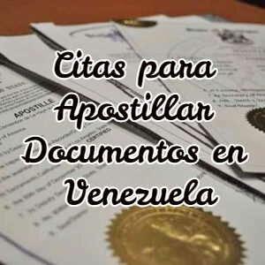 Citas para Apostillar Documentos en Venezuela