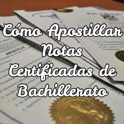 Cómo Apostillar Notas Certificadas de Bachillerato