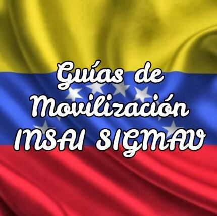 Guías de Movilización INSAI SIGMAV